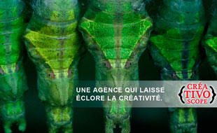 Consultez le portfolio de Créativoscope