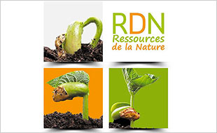 Consultez le portfolio de Agence RDN