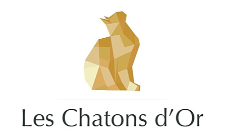 Chatons d'Or 2019 : Creative World In Progress