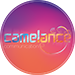 Camelance Communication